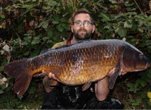Daz 35.10lb common carp